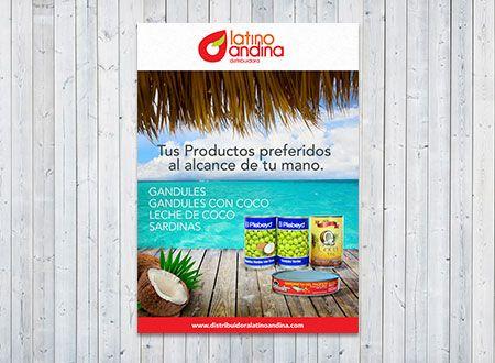 Latino Andina