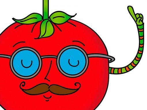 Taller Vaya Tomates